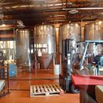 View of tank farm behind glass wall